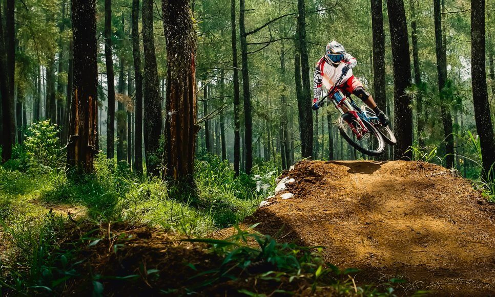 Mountain Biking di hutan pinus